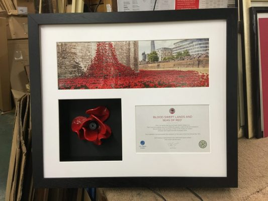 Framed Towere of London Poppy